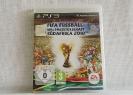 Fifa Fussball Weltmeisterschaft 2010